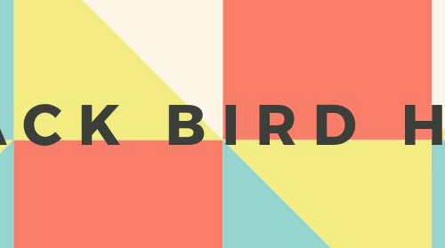 "Black Bird Hum broods in ""Say You Want"" single"