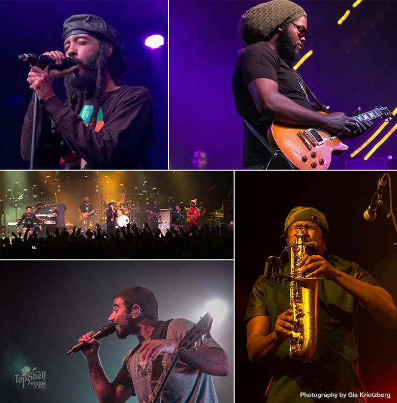 Rebelution Protoje Winter Greens Tour