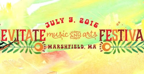 The Levitate Music and Arts Festival 2016