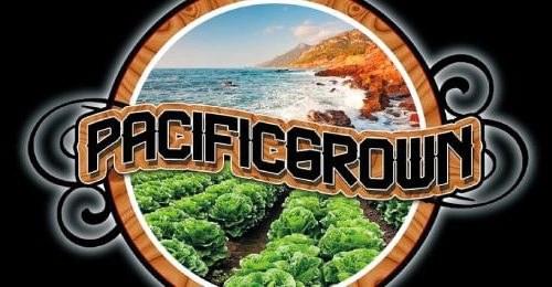 """Pacific Grown releases debut single """"Wherever You Are"""""""