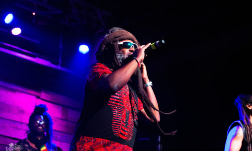 Steel Pulse with Tribal Seeds and Iya Terra