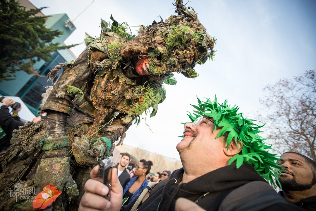 Just another day at The Emerald Cup