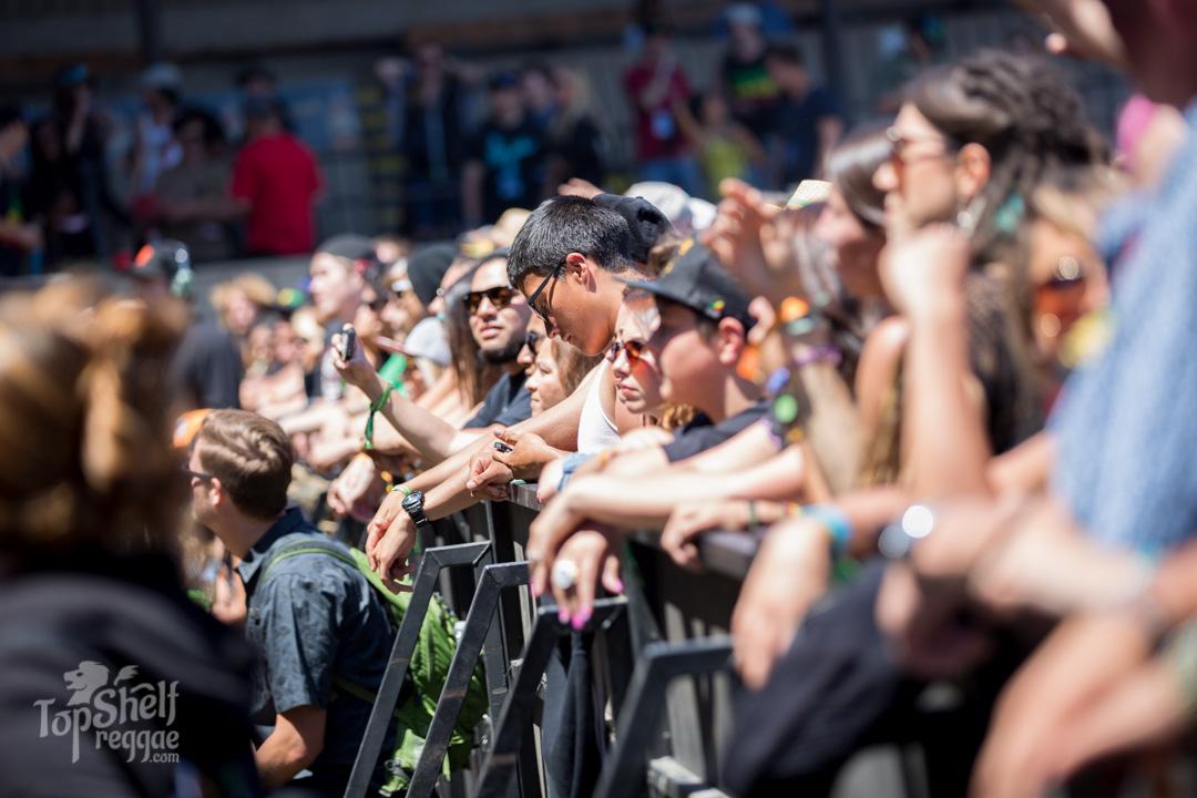 Fans wait patiently