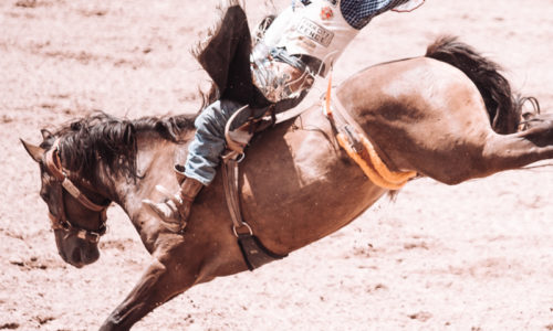 Wyoming's Cheyenne Frontier Days 2019