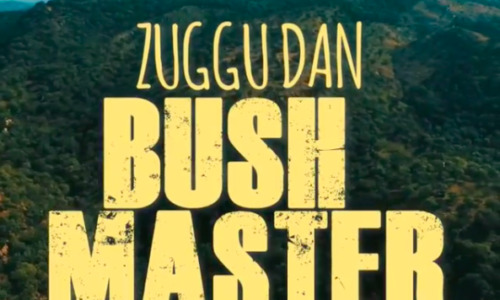 "Zuggu Dan drops ""Bush Master"" music video"