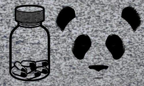 Street Pharmacy & Giant Panda Guerilla Dub Squad talk sociopolitical change & new single