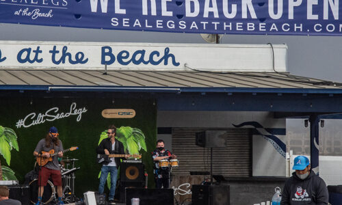 Sealegs at the Beach resumes live shows with Babylon Rockers