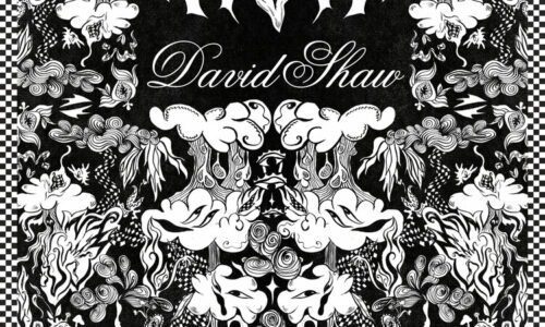 The Revivalists' David Shaw drops soulful debut solo album
