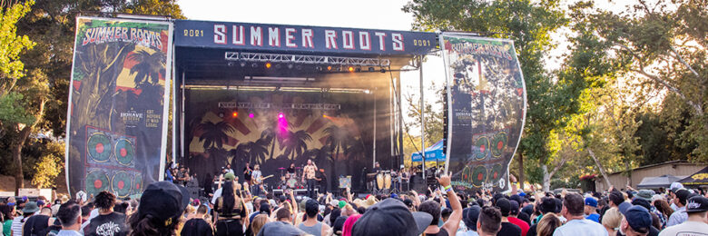 The full Summer Roots Festival experience